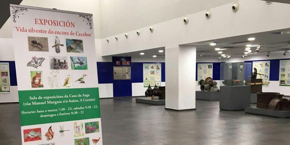 La vida silvestre llega a la Casa del Agua con 131 dibujos